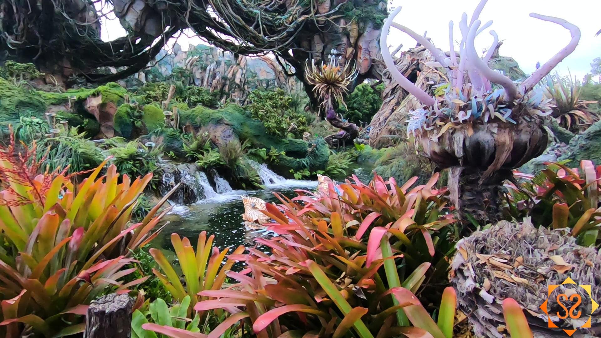 pandora-plant-life